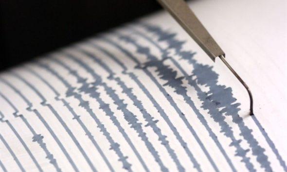 Sismografo per il terremoto