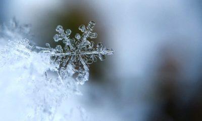 Gelo Inverno