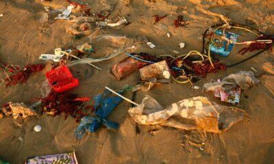 Abbandono Rifiuti Spiaggia